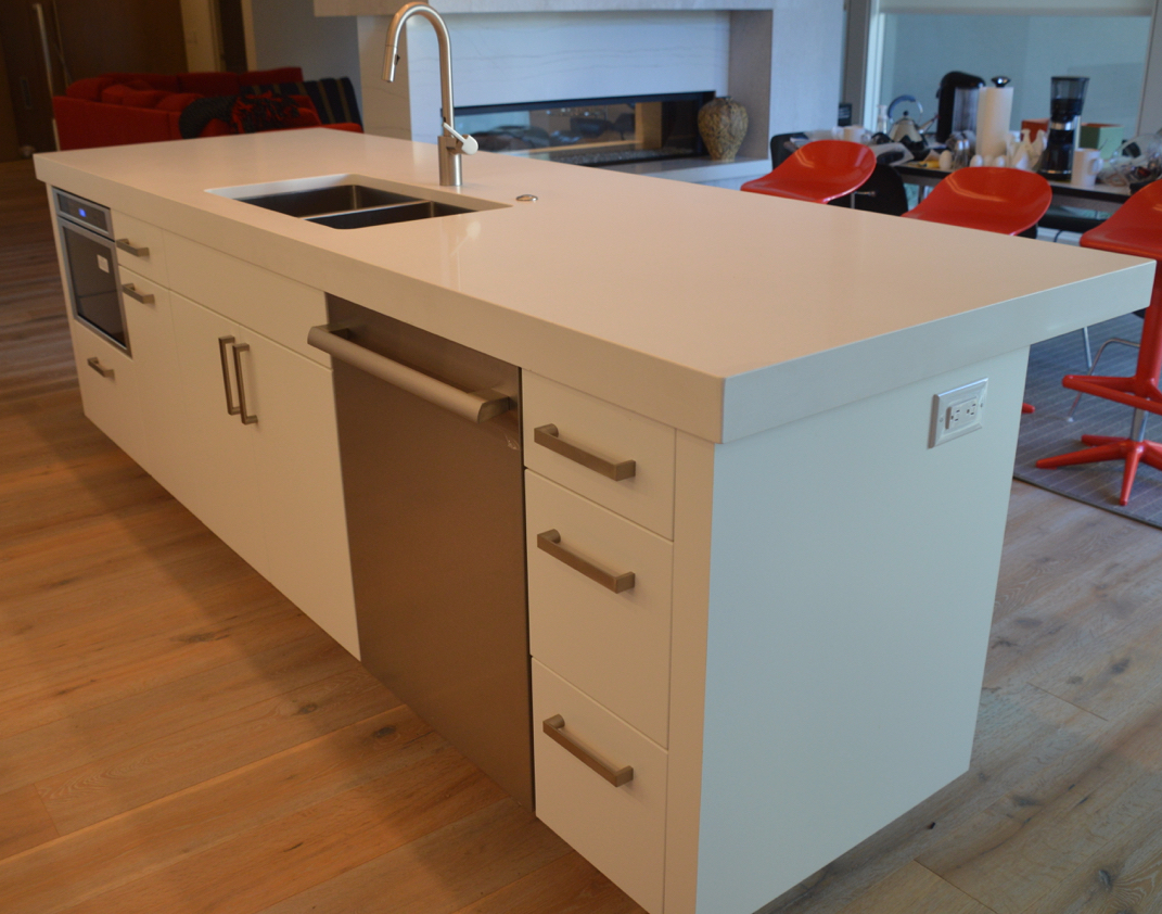 LIKE NEW! ASPEN LEAF KITCHEN CABINETS, WHITE QUARTZ COUNTER TOPS, RANGE TOP & HOOD -ONLY 8 MONTHS OLD!